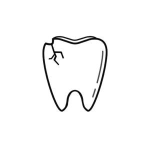 Dentist in 21742